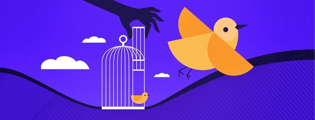 hand opening door to bird cage, freeing the bird
