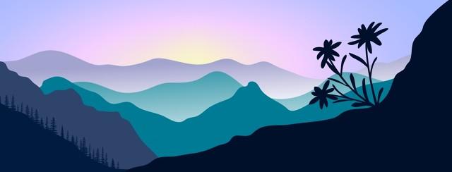 The sunrise illuminates flowers growing in a mountain landscape.