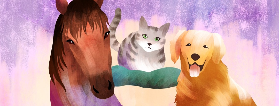 A horse, cat and dog look happy and content together.